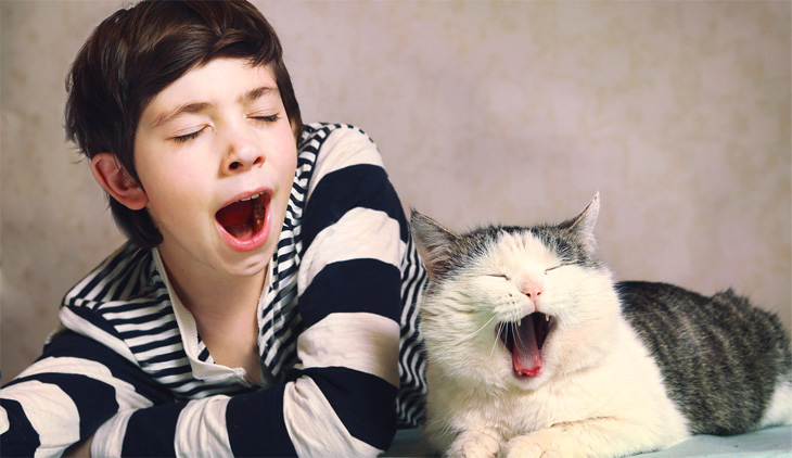 cat and child yawning together