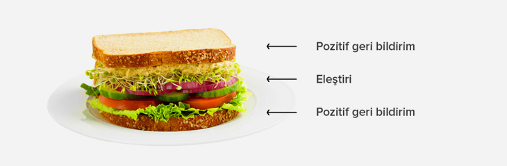 sandvic tekniği