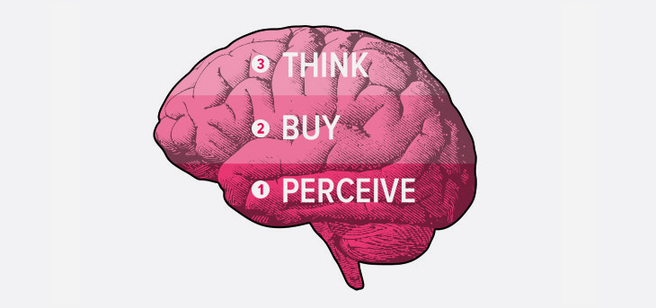 brain with a perceive, buy, think text